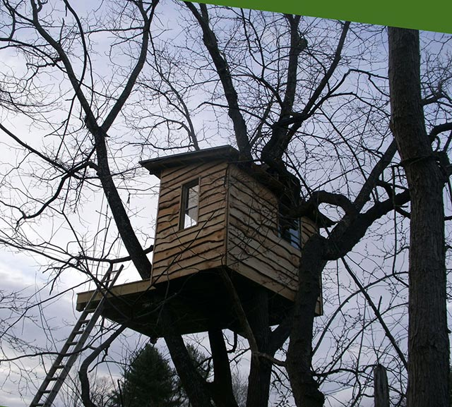Adam Laufer treehouse playhouse