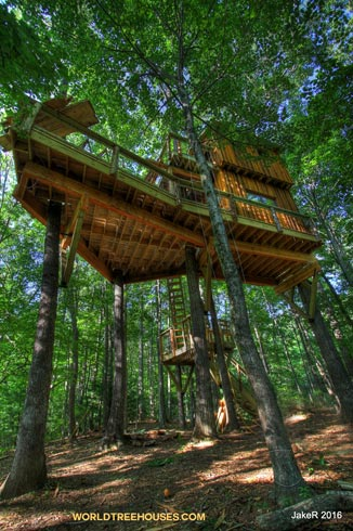 world-treehouses-brevard-asheville-jake3