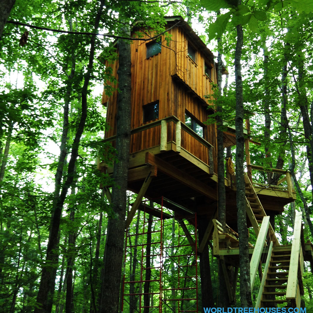 world-treehouses-brevard-asheville-copyright