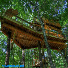 world-treehouses-asheville-brevard