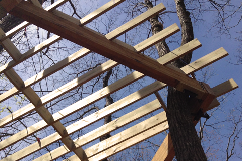 Asheville and WNC treehouse builder begins Brevard treehouse installation