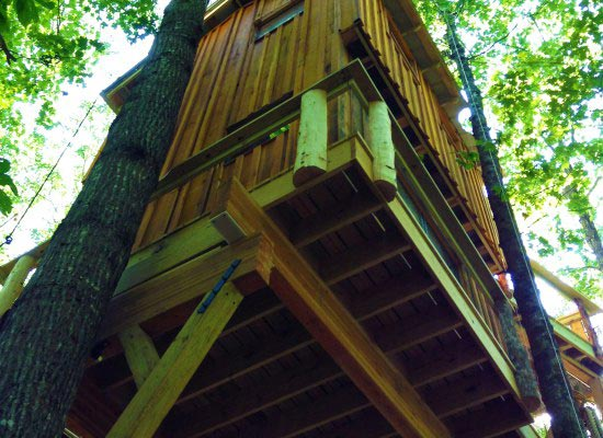 World-Treehouses-Brevard-view-from-below