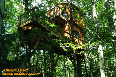 world-treehouses-asheville-brevard-treehouse4