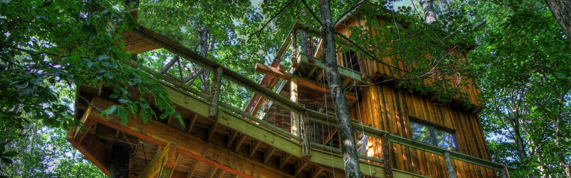 World Treehouses