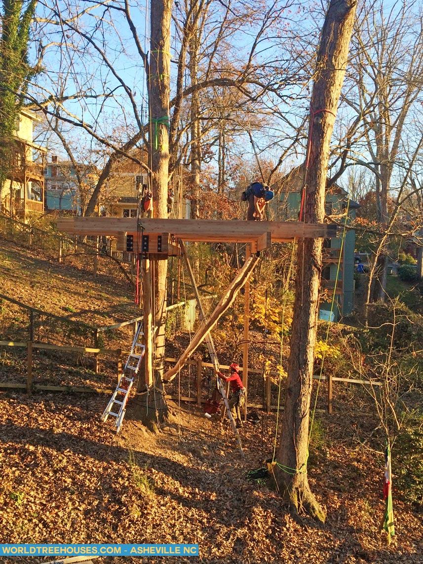 treehouse builder Asheville