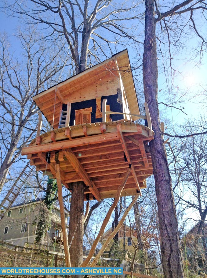 asheville tree house