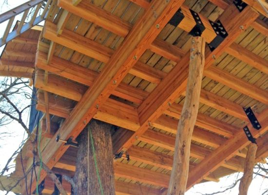 asheville tree house underside