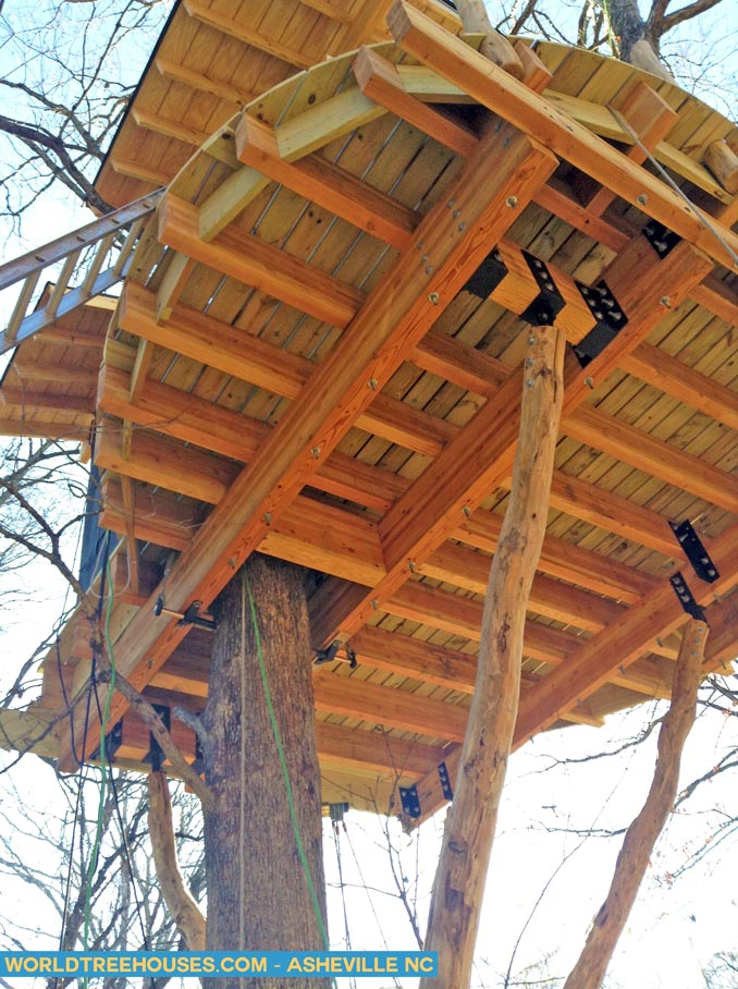 Creation of a Tree House Dream in Asheville NC