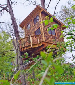 world-treehouses-asheville-nc-downtown5