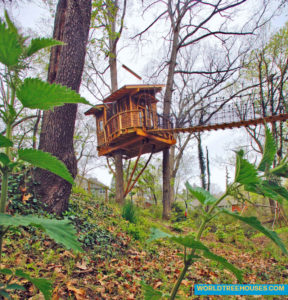 world-treehouses-asheville-nc-downtown6