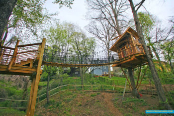 world-treehouses-asheville-nc-suspension-bridge2