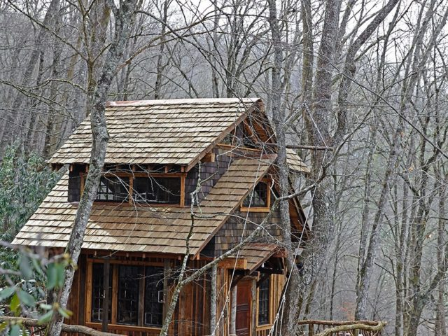 WNC treehouse builder: Siding art to mimic bark