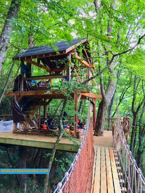 Asheville treehouse builder: The bridge is installed!