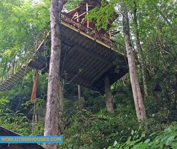WNC TREE HOUSE BUILDERS : Panthertown From Below with a Bridge