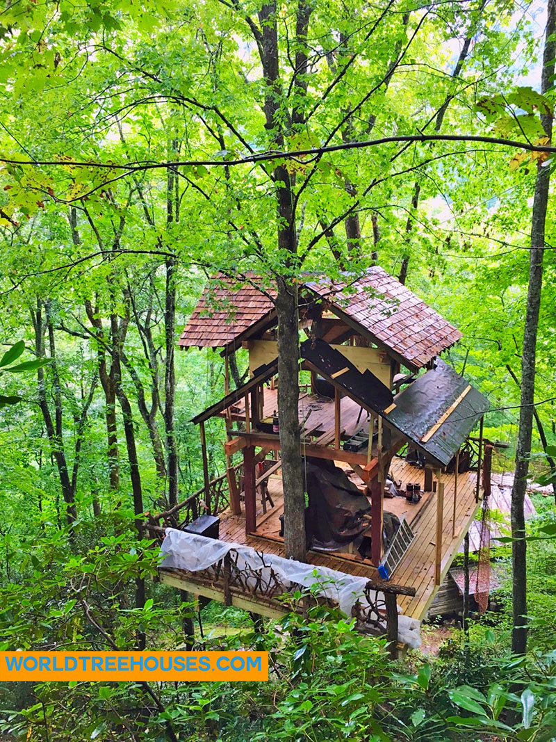 Asheville treehouse builder: 40ft off the forest floor!