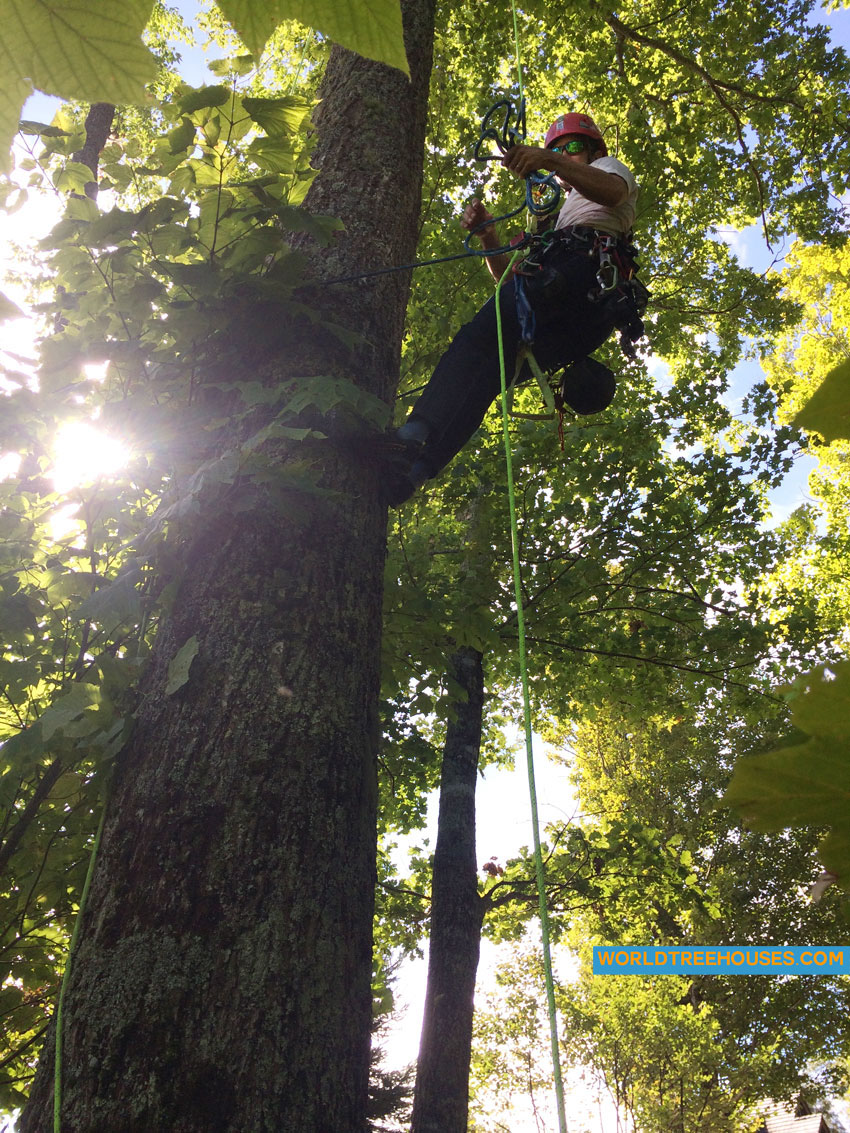 Western NC treehouse builder : Hanging in a Tree