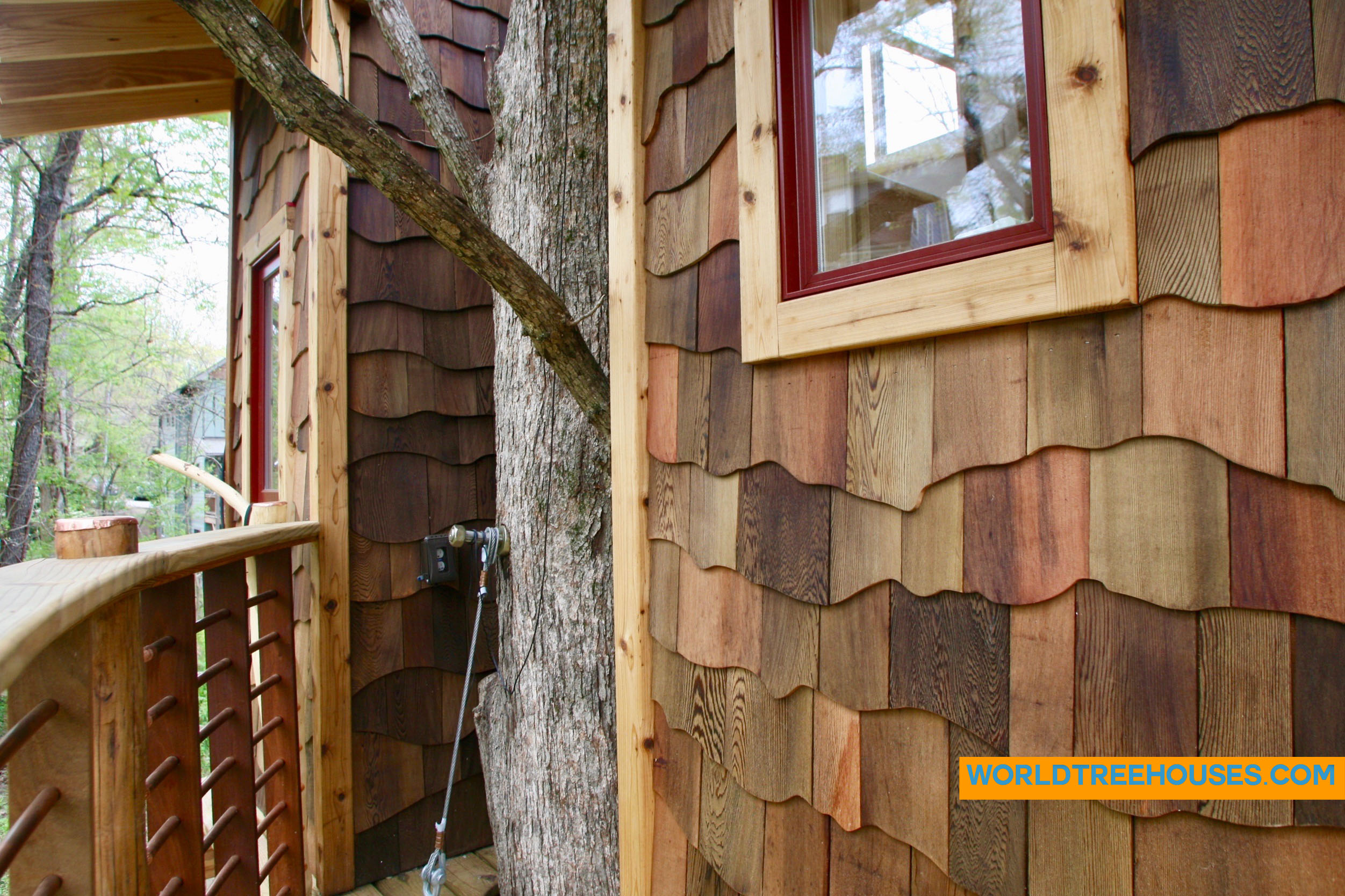WNC treehouse builders : Tree and House