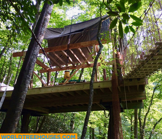 NC tree house builders : Panthertown First Floor Framing Begins