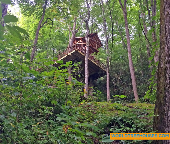 WNC treehouse builders : Panthertown Treehouse in Nature