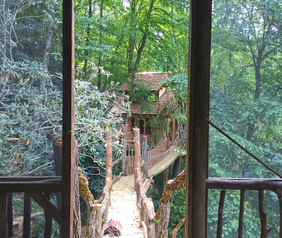 WNC tree house builders : Panthertown View to the Bridge