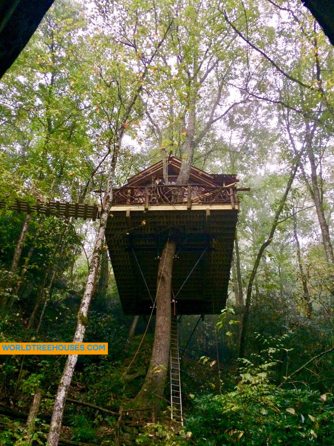 WNC treehouse builder : A House in the Canopy