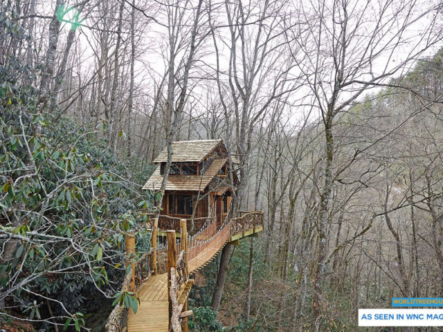 NC tree house builder : Winter comfort and spring renewal in the trees!