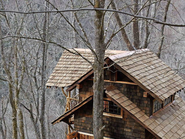 Asheville tree house builder : A Retreat to Honor the Natural World
