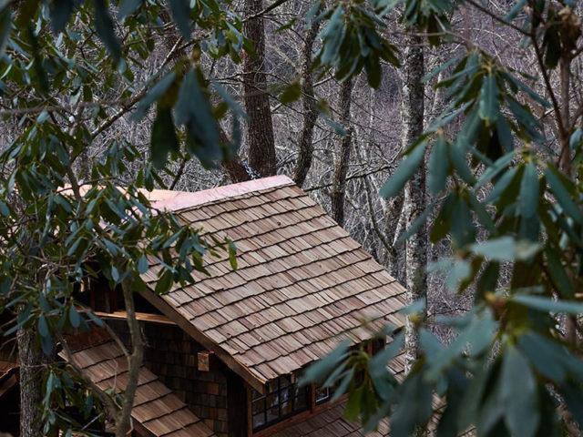 NC treehouse builders : Bird's Eye View