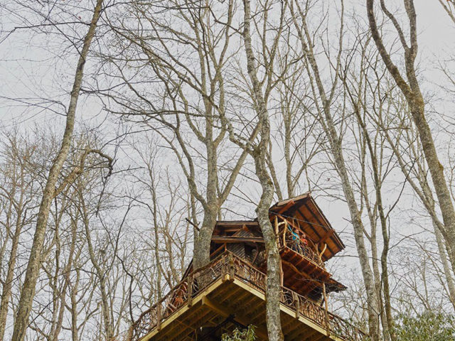 WNC treehouse builder :  A View from the Sky