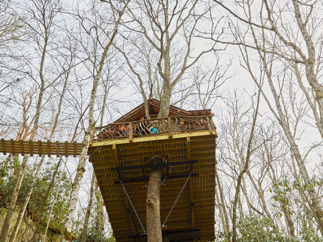 WNC treehouse builders : A Nest in the Trees!