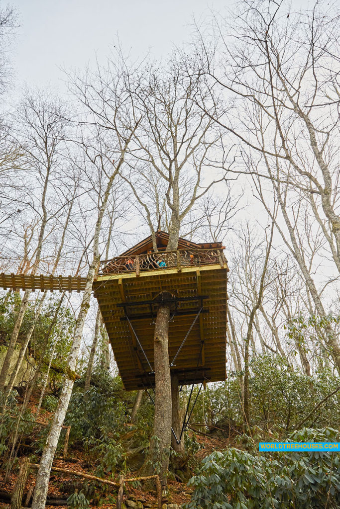 WNC tree house builders