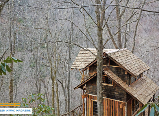 Asheville tree house builder