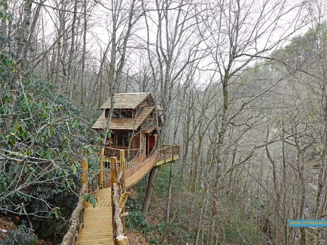 NC tree house builders : 100 Steps to Heaven