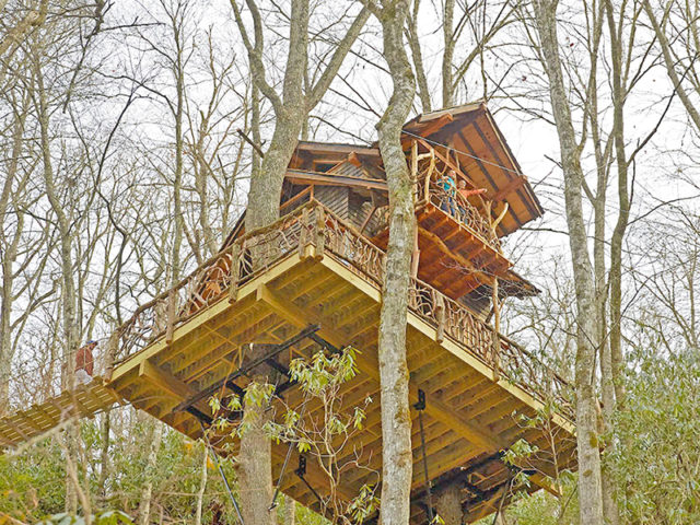 ASHEVILLE TREEHOUSE BUILDER: Panthertown treehouse: Looking down on paradise