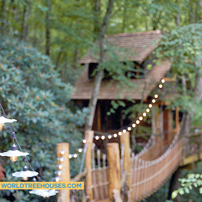 Western NC tree house builder: Panthertown treehouse:  All wrapped up in a blanket of green trees!