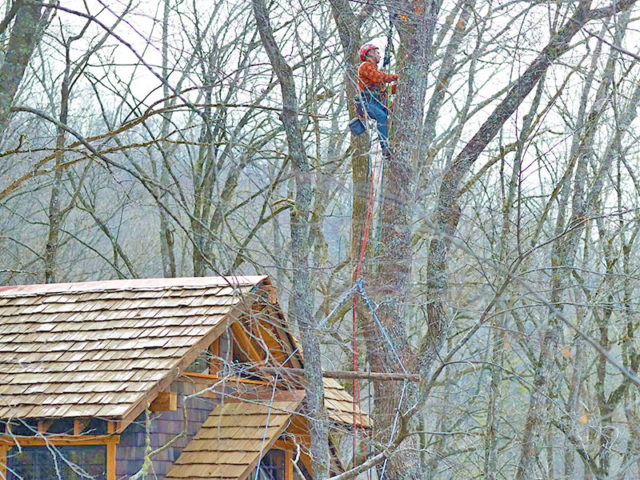 NC treehouse builders: Panthertown treehouse: Final Touches