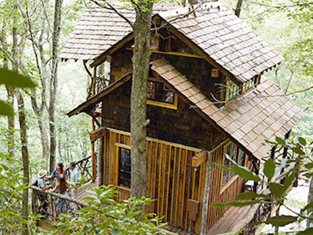 WNC treehouse builder: Panthertown Treehouse: Way on up the mountain!