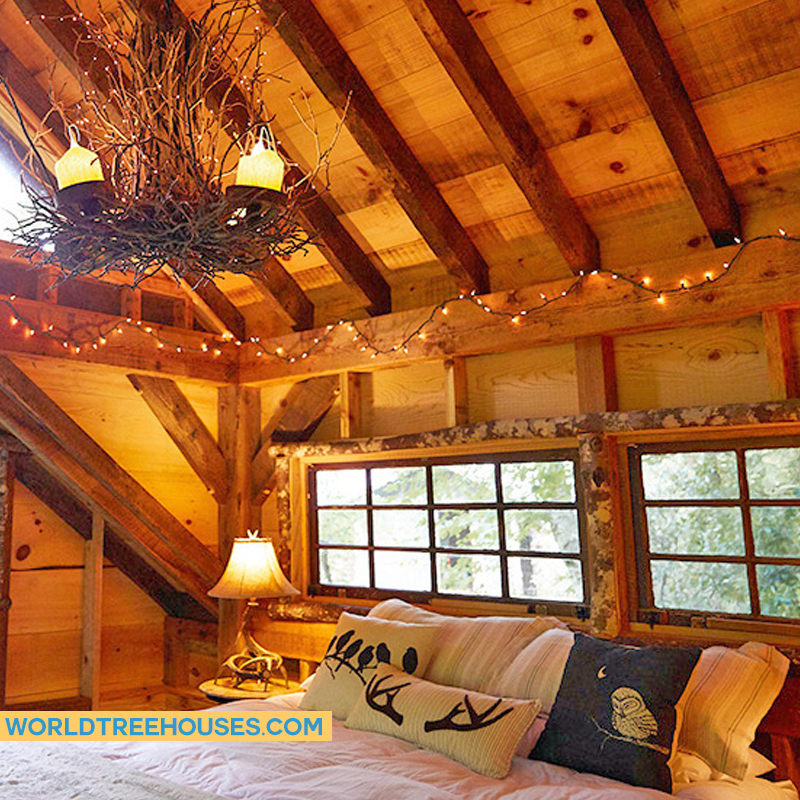 NC tree house builders: Wake up each day immersed in the beauty of the natural world.